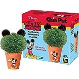 Chia Pet Disney's Mickey Mouse Handmade Decorative Planter