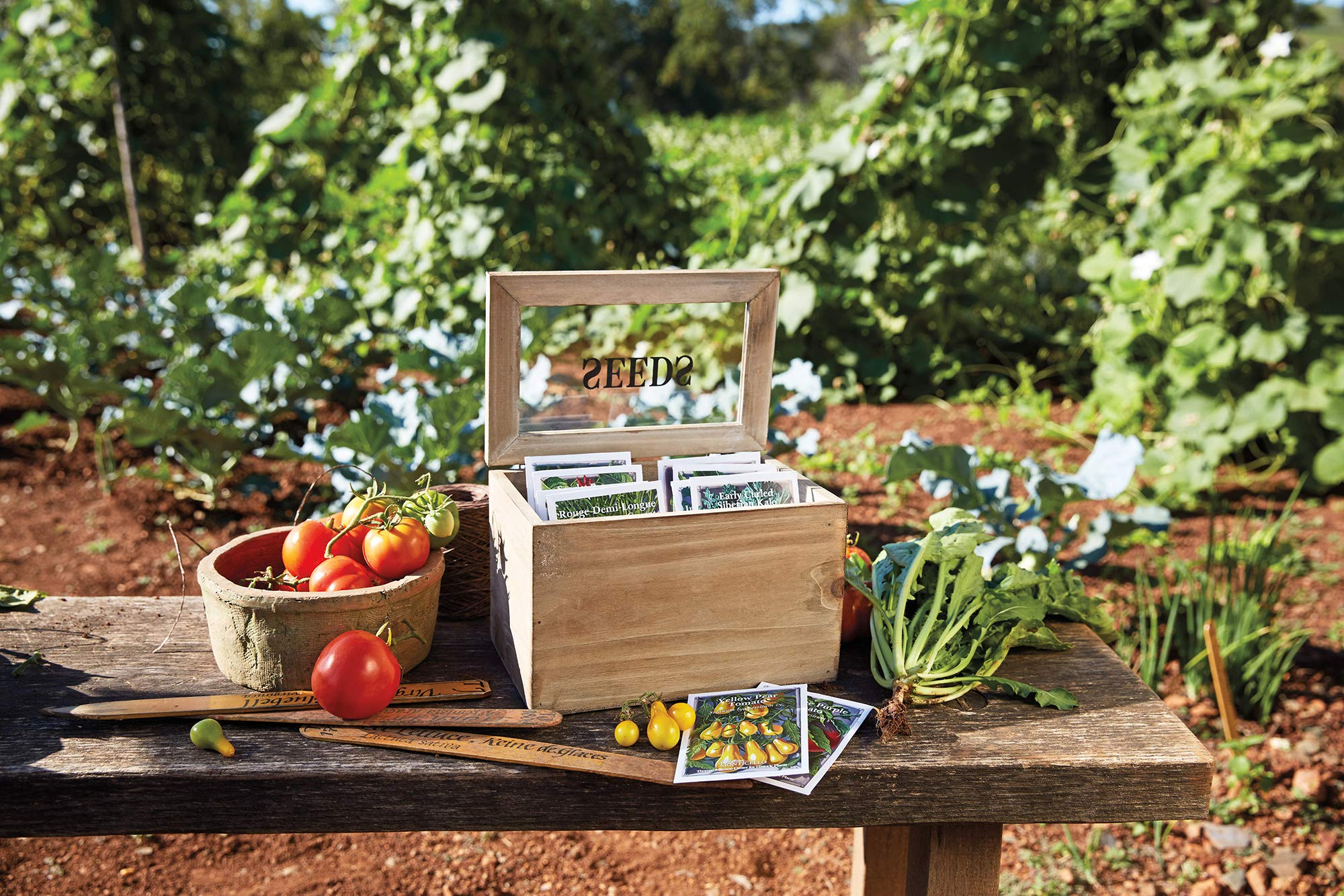 Monticello Seed Packet Box with 10 Heirloom Vegetable Seed Packets by Monticello