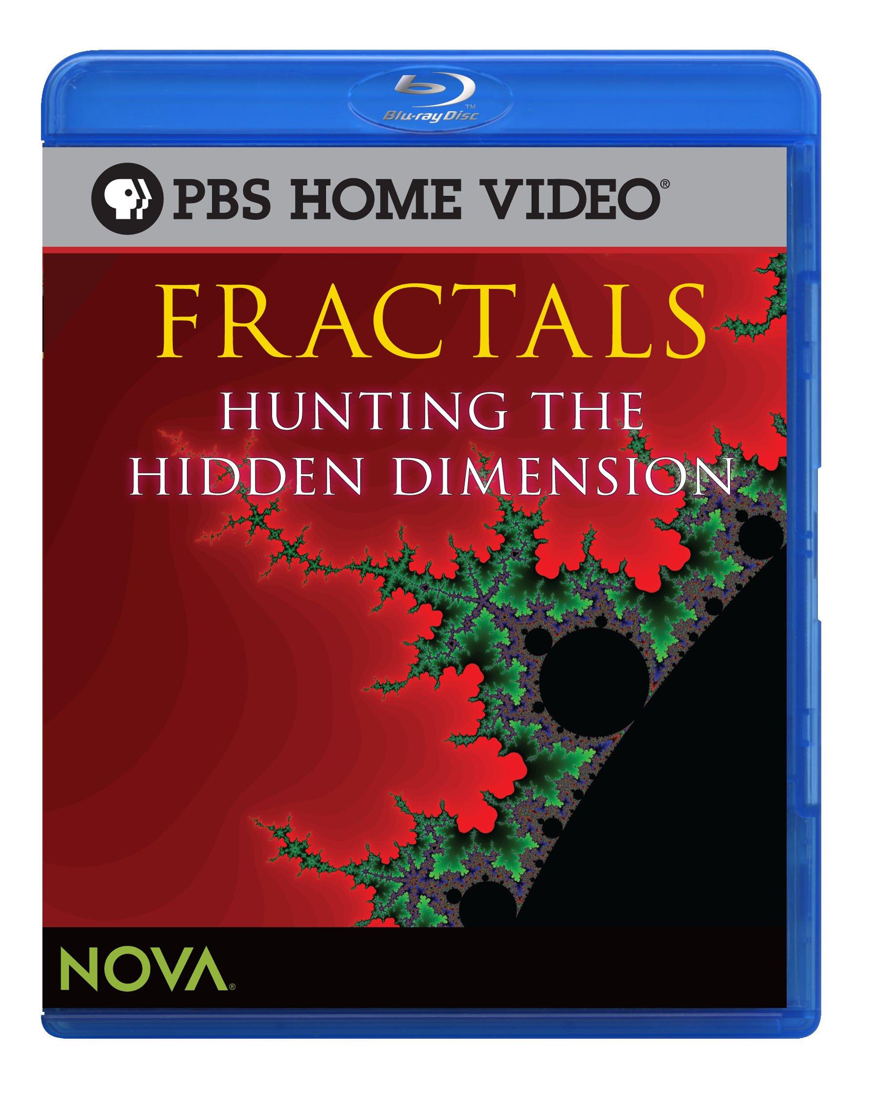 Blu-ray : Fractals: Hunting The Hidden Dimension (Blu-ray)