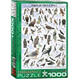 EuroGraphics Birds of Prey and Owls Puzzle (1000-Piece)