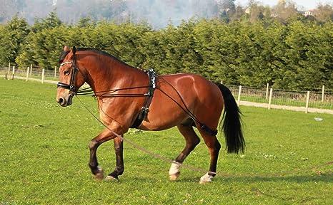 bianco taglia unica sulla vendita New cavallo allenamento Pessoa basato nero marrone
