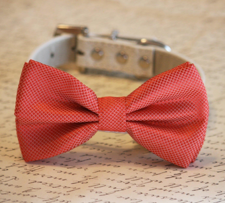 Coral Dog Bow Tie, Coral Wedding Dog Collar, Coral Pet wedding accessory, Wedding ideas