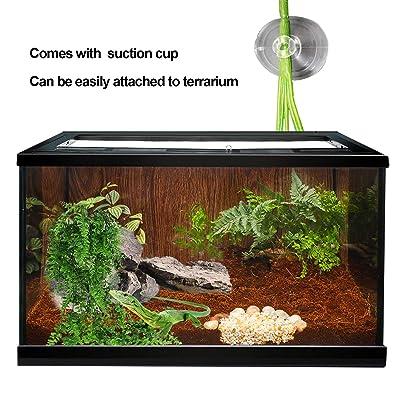 Thrive Tropical Reptile Terrarium Essentials Kit - 30 Gallon - reptile  Terrariums - PetSmart