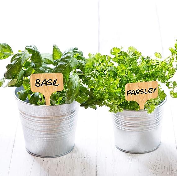 50 Pack Etiquetas de Plantas, Marcadores para Plantas, Bambú ...