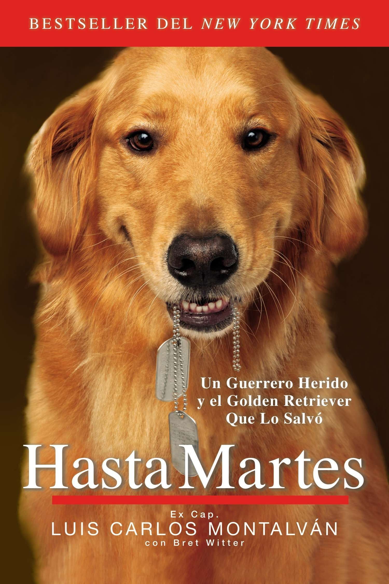 Hasta Martes (Spanish Edition) (Spanish) Paperback – July 30, 2014