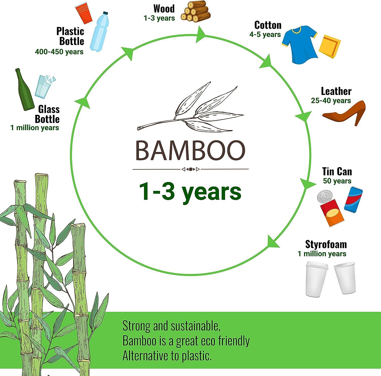 ROSMARINO Rossenino 400 ml, Reutilizable, Material Natural, con Tapa de Silicona y precinto Vaso de bamb/ú