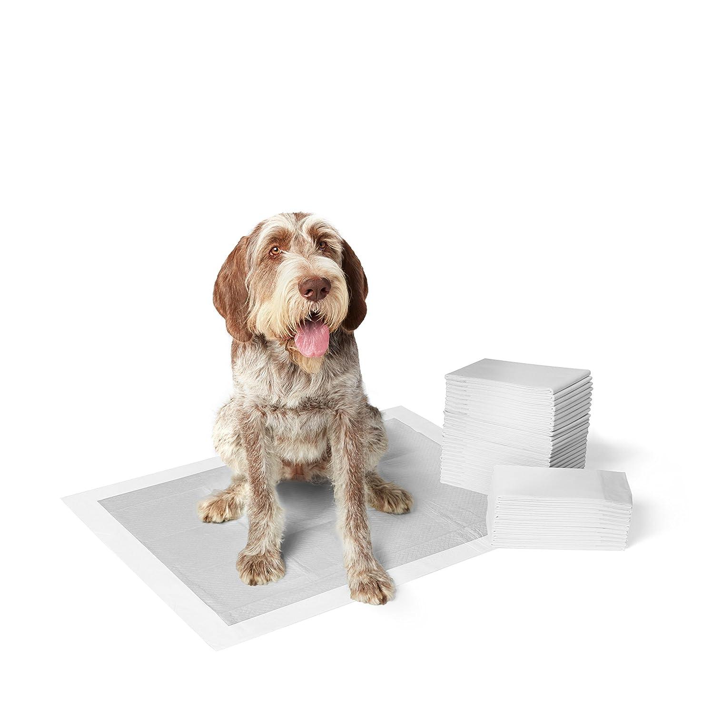 AmazonBasics - Empapadores de adiestramiento para perros, carbón, extragrande, 30 unidades: Amazon.es: Productos para mascotas