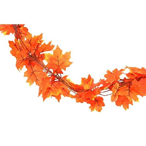 Fall Decorations Clearance: Amazon.com