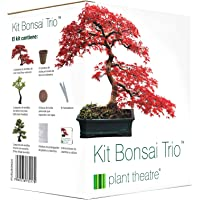 Plant Theatre Kit Bonsai Trio - 3 árboles