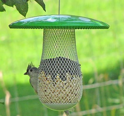 Amazon the best wild bird feeder to attract more wild birds the best wild bird feeder to attract more wild birds fill it with sunflower black forumfinder Gallery