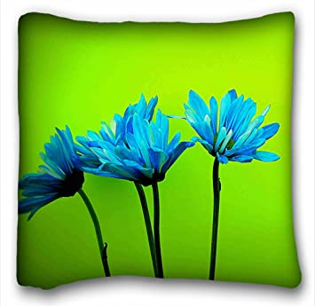 Amazon Com Tarolo Decorative Teal Turquoise Daisies Flowers Lime