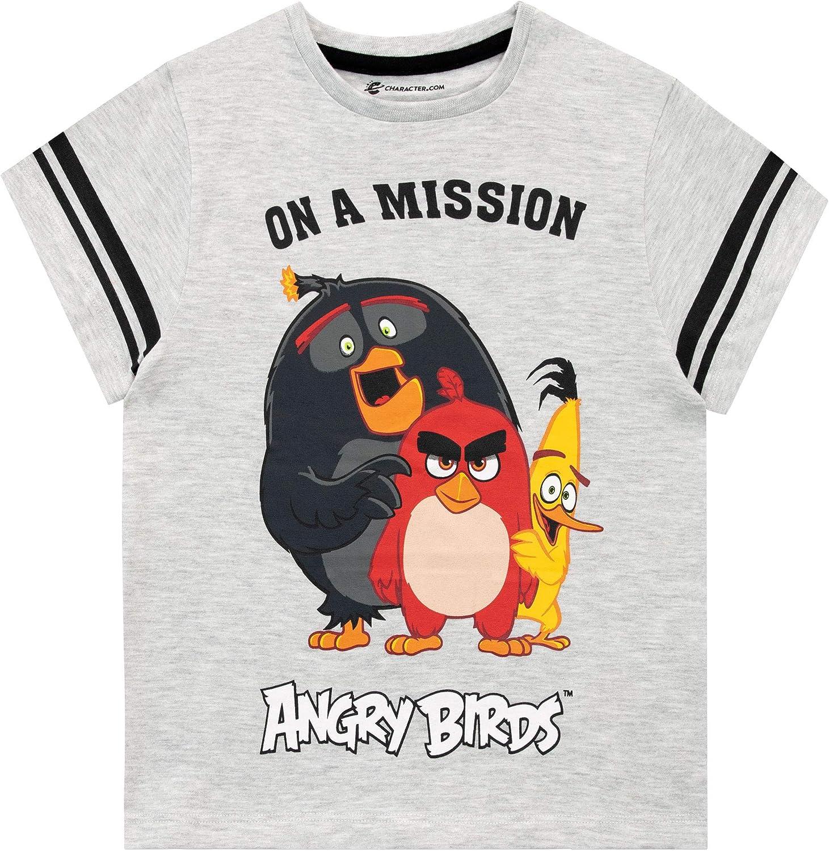 Angry Birds Camiseta de Manga Corta para niños: Amazon.es: Ropa y ...