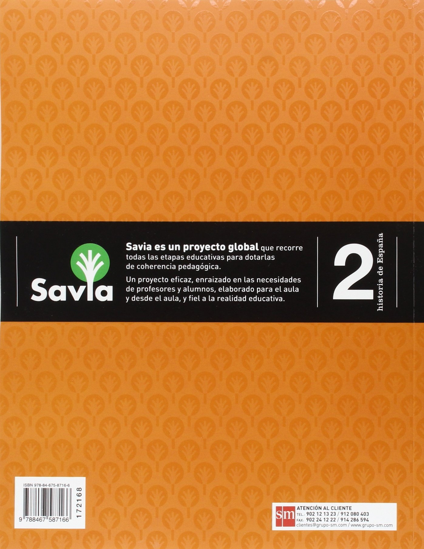 Historia de España. 2 Bachillerato. Savia - 9788467587166: Amazon ...