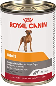 Royal Canin Canine Health Nutrition Adult