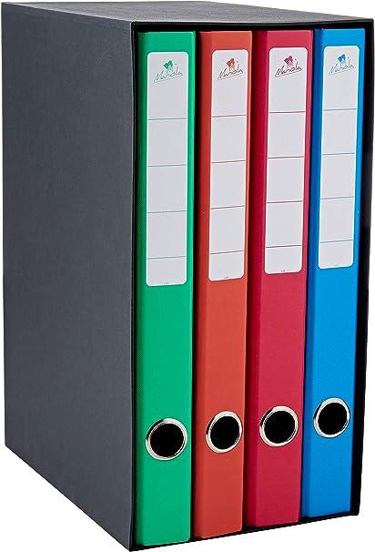 Mariola 4784SU - Archivador con 4 carpetas, 2 anillas, 25 mm: Amazon.es: Oficina y papelería