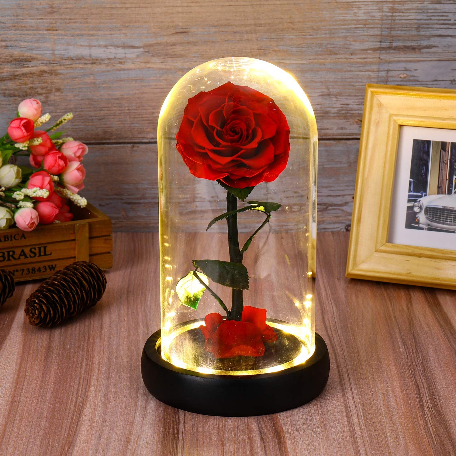 Tiaronics Beauty and The Beast Rose, Enchanted Rose Preserved Real Rose in Glass Dome with Gift Package Best Gifts for Her, Anniversary, Wedding, (Preserved Real Rose with Light)