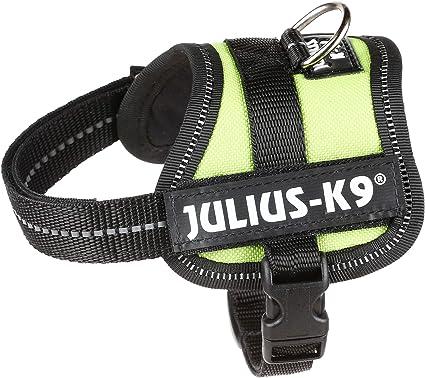Arnes para perros JULIUS K9 Baby TRIXIE: Amazon.es: Jardín
