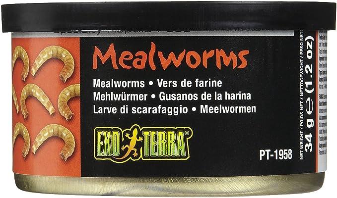 Exo Terra Meniu Mealworms 34 G