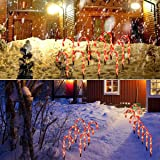 Cane Candy Lights - Outdoor Christmas Yard Lawn