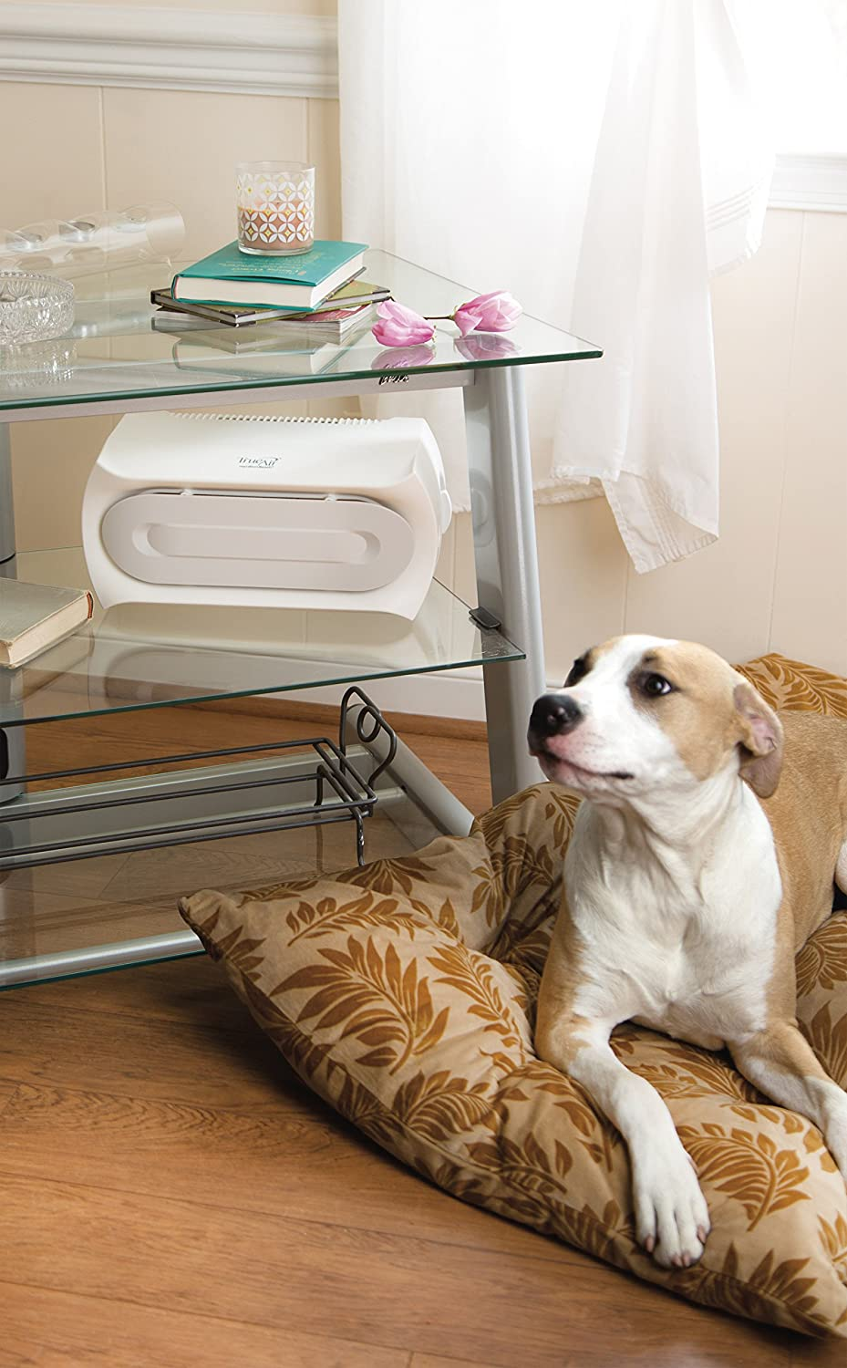 Top 10 Best Air Purifiers For Pets In 2019 Reviews