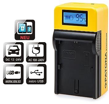 Patona LCD Top Cargador para Batería Sony NP DMC-FZ100 con entrada Micro-USB y salida USB para cargar un dispositivo (Smartphone Terciario paralelo, ...