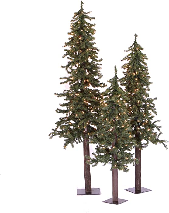 Vickerman Natural Alpine Tree Set lit by 500 Clear lights, with three trees sized 4', 5', and 6'
