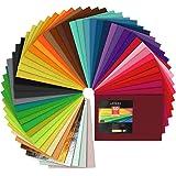SOLEDI Fieltro Manualidades Tela no Tejido de Lana 60 Colores, Material para Costura y Artesanías de Bricolaje (30*30cm): Amazon.es: Juguetes y juegos