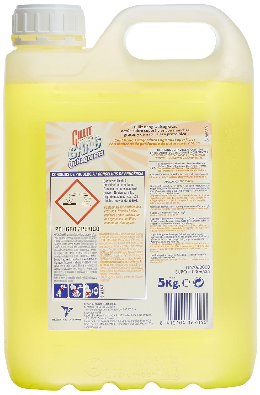 Cillit Liquido limpiador quitagrasa Bang Profesional - 5000 ml: Amazon.es: Alimentación y bebidas