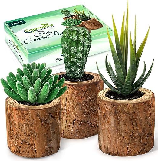Manyo macetas de Cactus en Forma Cuadrada Maceta para Flores de Madera Maceta para decoraci/ón de Jardines Maceta Interior de dise/ño Maceta de Maceta Maceta y ultiver