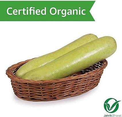 Fresh Organic Bottle Gourd, 1 Piece