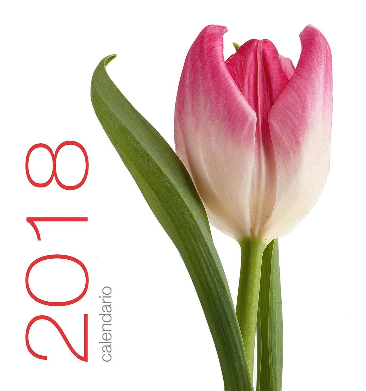 Edizioni White Star Fiori Calendario da Tavolo White Star Srl 9788854034280
