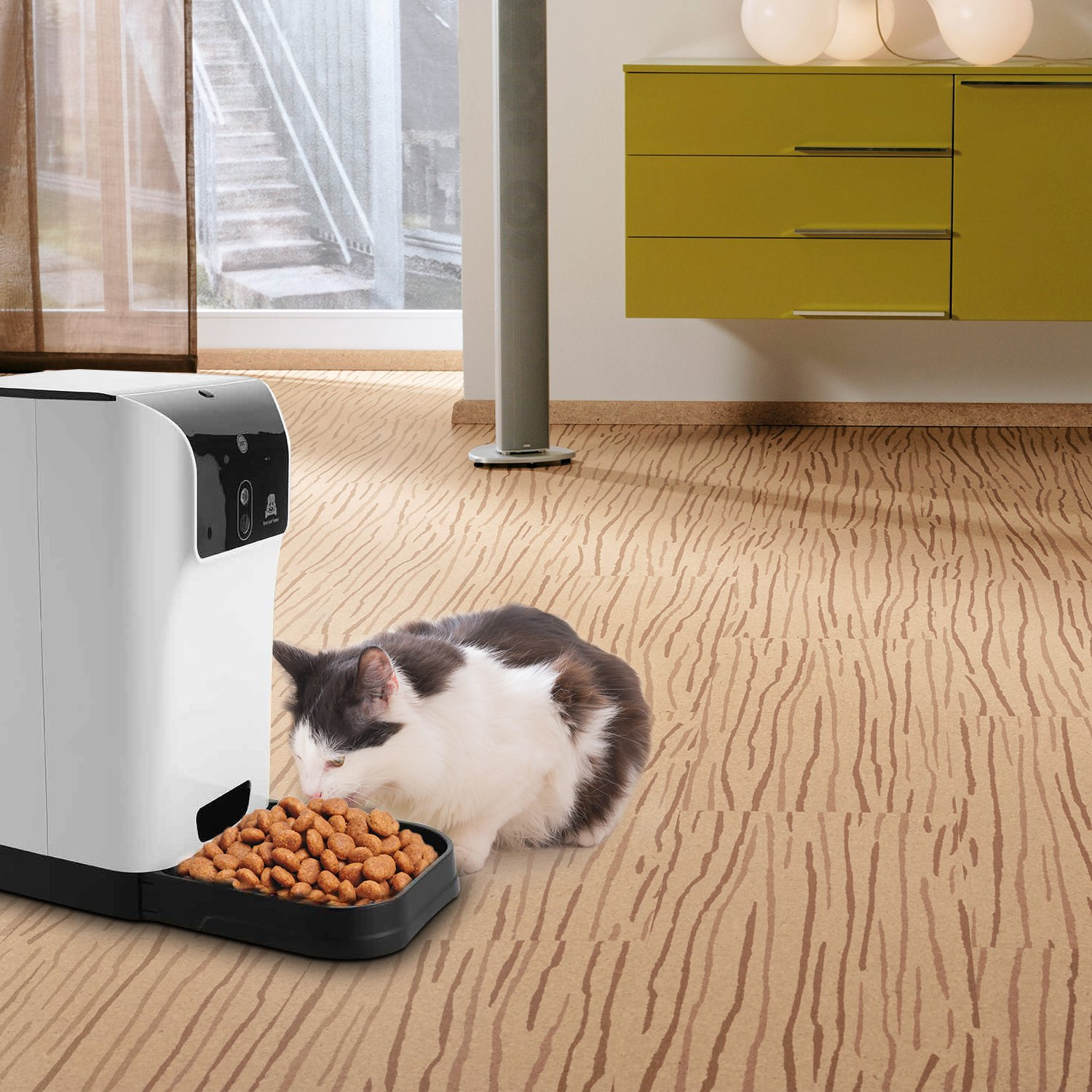 pet camera reviews : Sailnovo Cat Feeder on Amazon