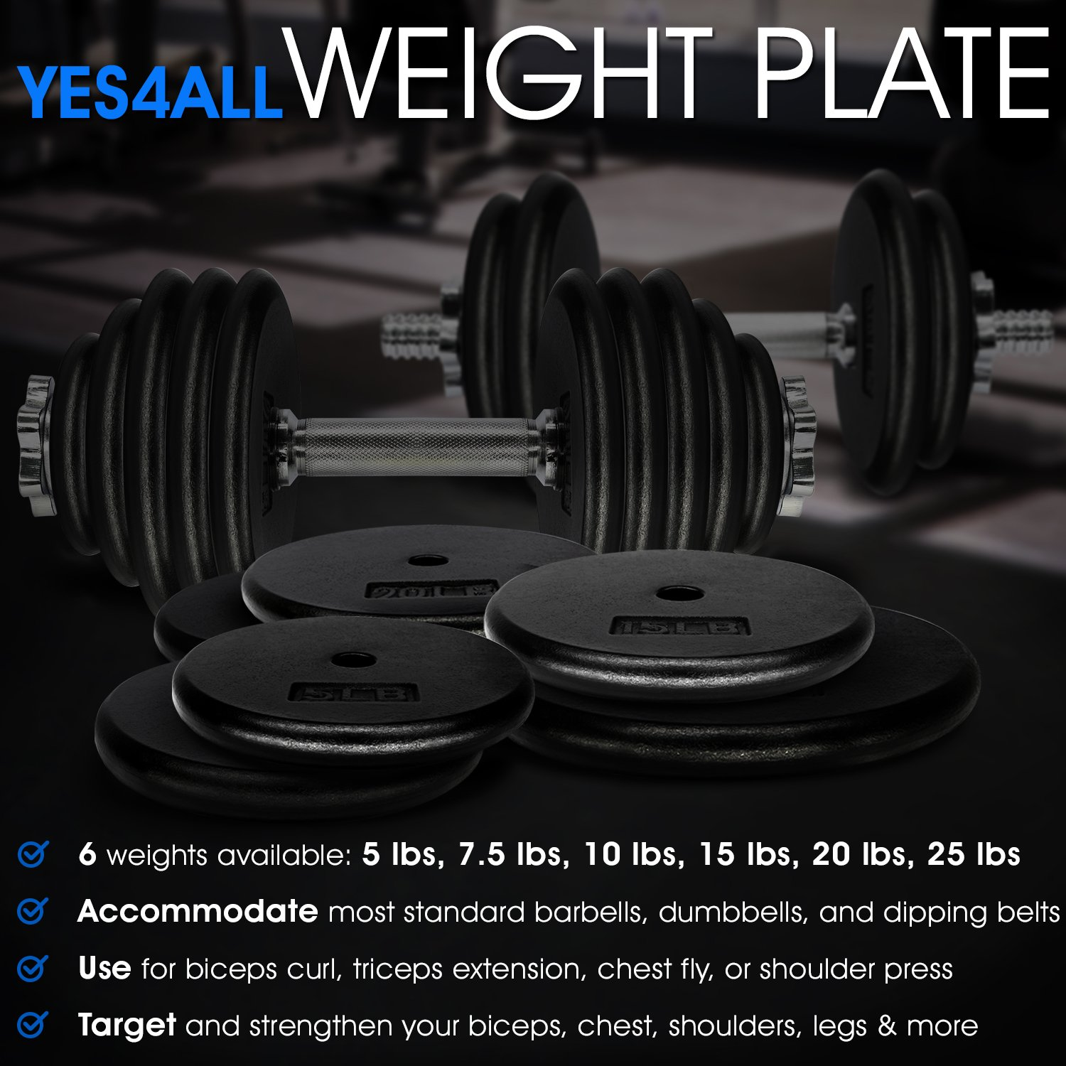 Amazon.com : Yes4All 1-inch Cast Iron Weight Plates for Dumbbells -  Standard Weight Disc Plates (5 lbs, Single) : Sports & Outdoors