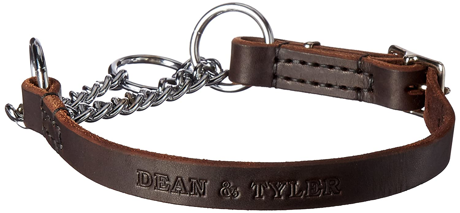 Dean & Tyler Leather Martingale Adjustable Chrome Plated Steel Choke Dog Collar, 24 by 3 4-Inch, Brown
