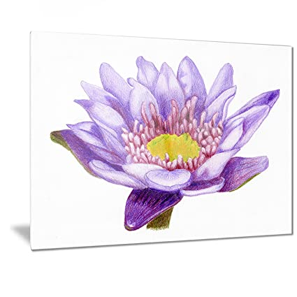 Amazoncom H Drawn Purple Lotus Floral Art Metal Wall Art