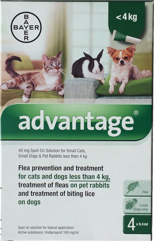 4 Temas: ventaja 40 mg o 80 mg Spot On para gatos + Indorex Spray + peine de pulgas + pluma limpieza con juguete. Veterinario montado gato pulgas Bundle: Amazon.es: Productos para mascotas
