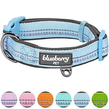 Amazon.com : Blueberry Pet 6 Colors Soft & Comfy 3M Reflective ...