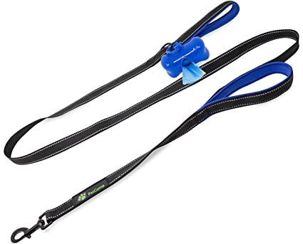 PetComp Double Handle Dog Leash - For Walking and Training Large and Small  Dogs - Bonus Poop Bag Dispenser and Bags - 6 Feet Long Reflective Strap -