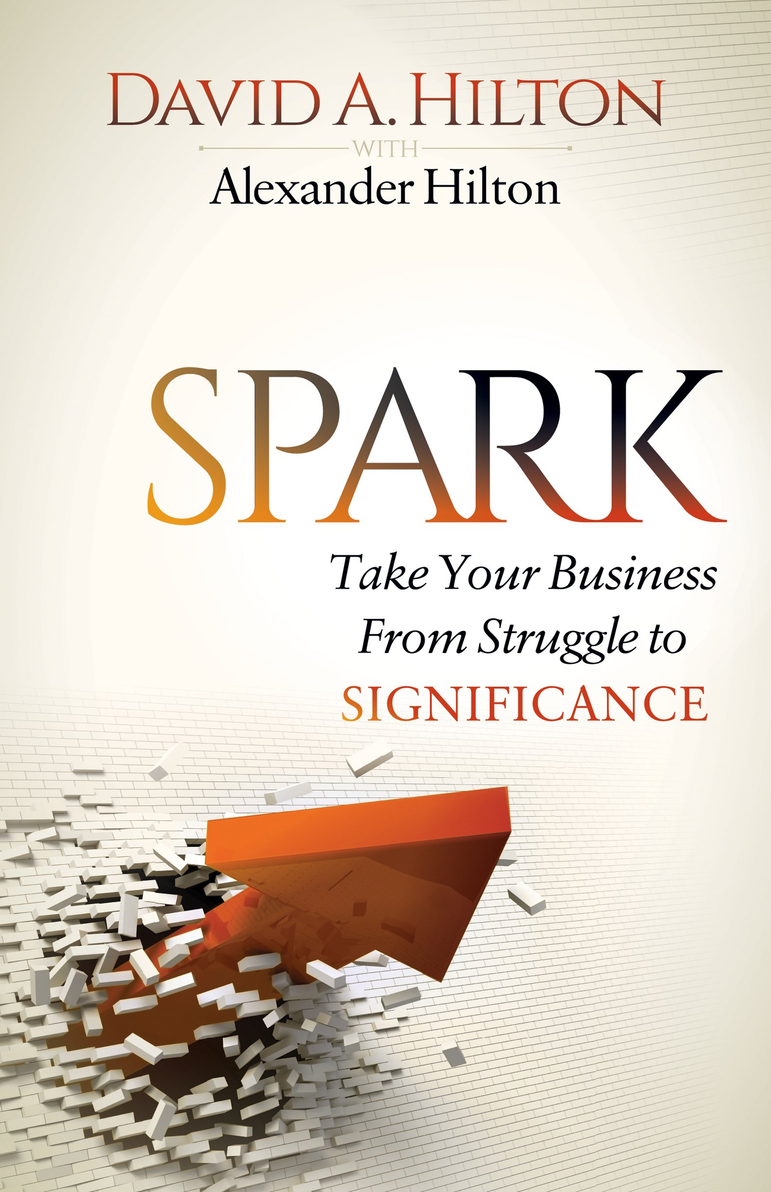 Spark: Take Your Business From Struggle to Significance PDF