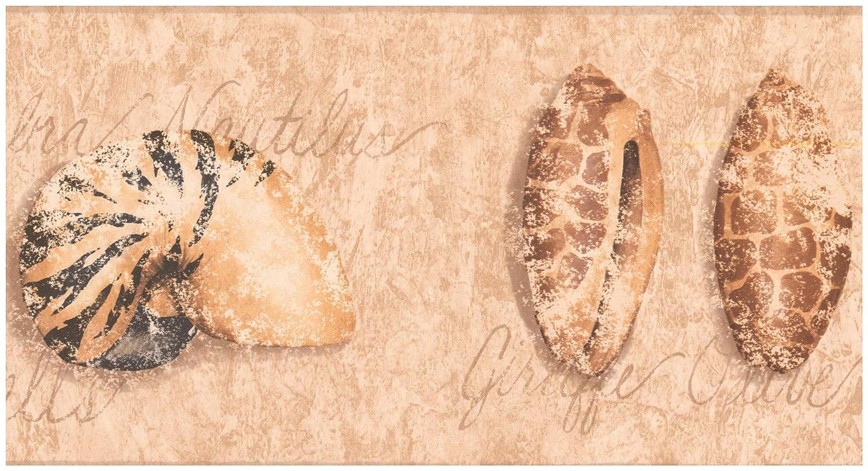 Wallpaper Border Seashells Distressed Light Brown Wall