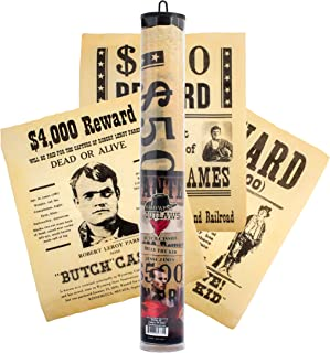 product image for Channel Craft Wild West Outlaws Historical Document Set