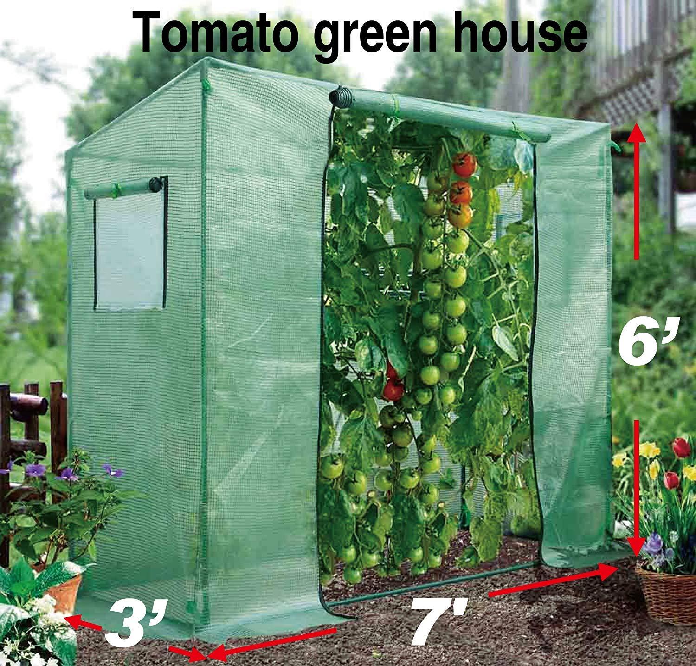BenefitUSA TMTGH Portable Outdoor Planting Tomato Summer/Winter Backyard (7'X3'X6') Greenhouse, Green