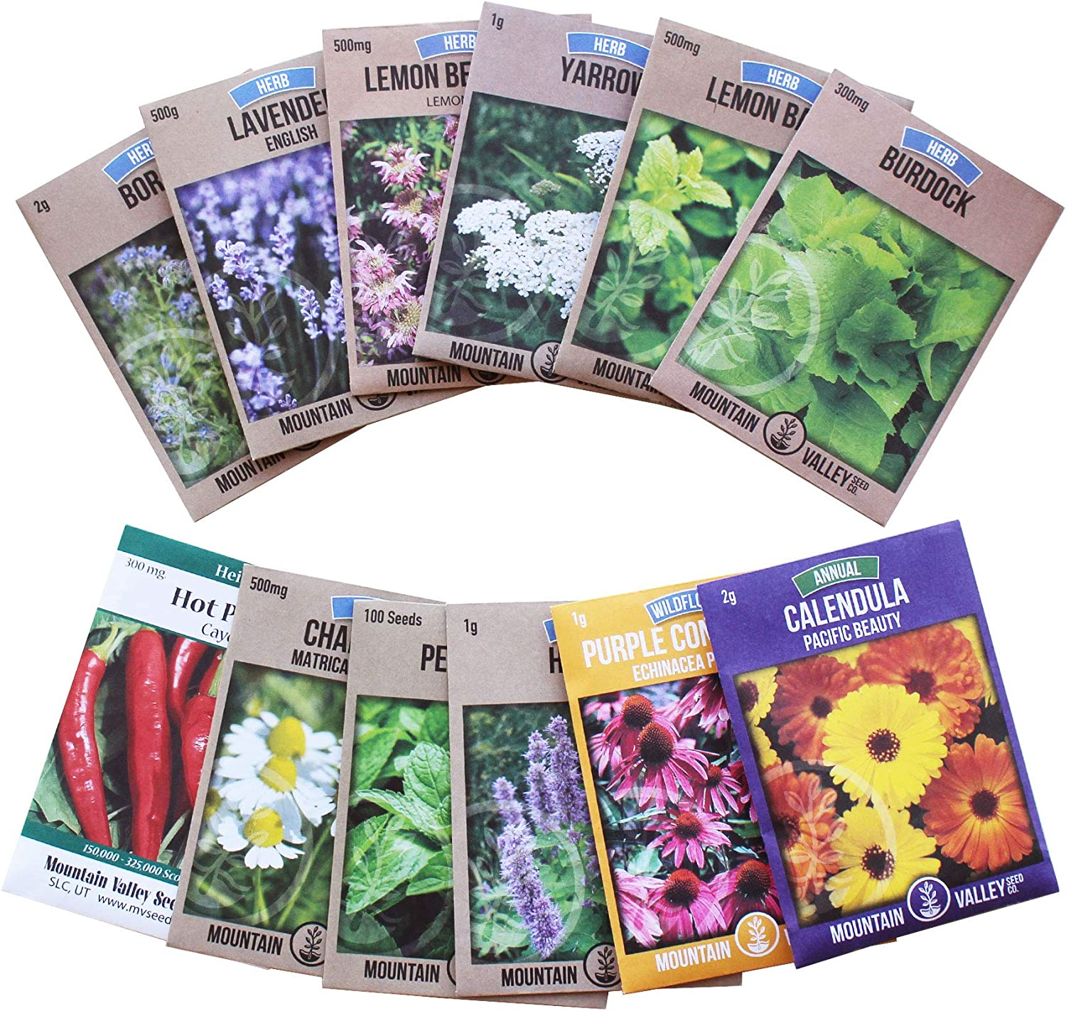 Living Whole Foods Medicinal Herb Seed Assortment - Non-GMO Healing Herb Seeds - Burdock, Cayenne, Yarrow, Chamomile, Hyssop, Echinacea, More