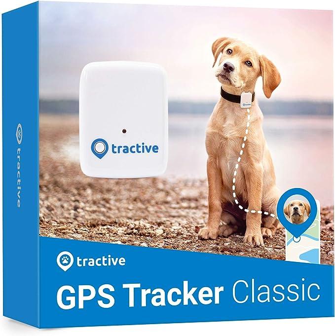Tractive Localizador GPS para perros - Rastreador con rango ilimitado, Blanco (TRATR1)