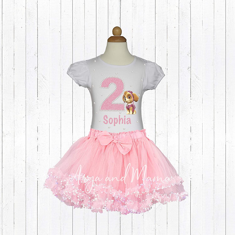 Paw Patrol Skye Birthday Outfit