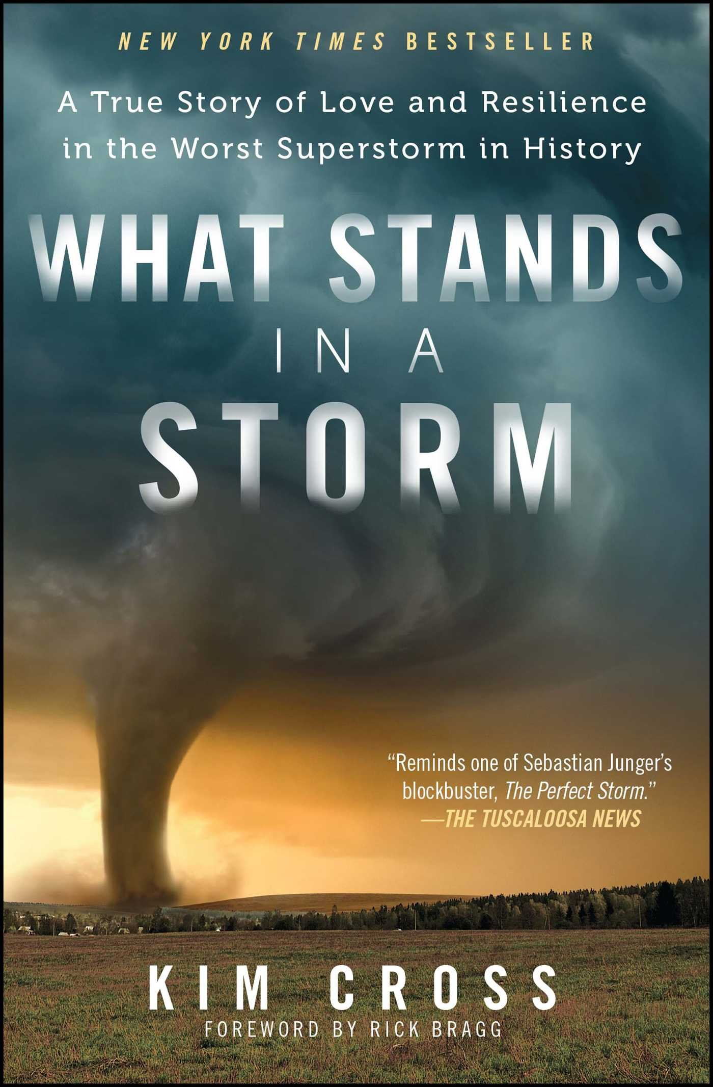Read Online What Stands in a Storm: A True Story of Love and Resilience in the Worst Superstorm in History pdf epub