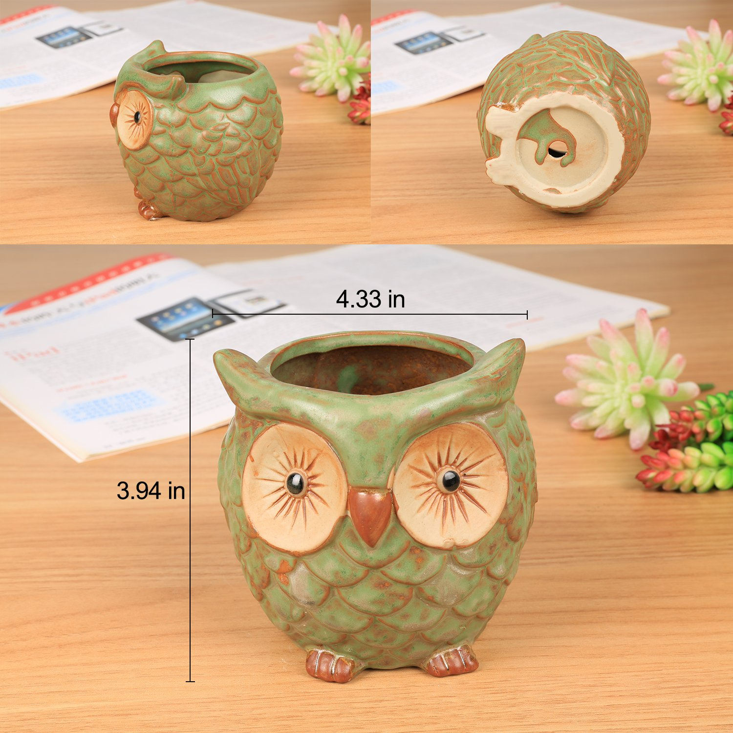 ROSE CREATE 3pcs 3in / 4in / 4.5in Owl Flower Pots by ROSE CREATE (Image #2)