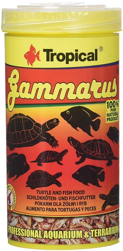Tropical Gammarus comida para acuariofilia 250 ml: Amazon.es ...
