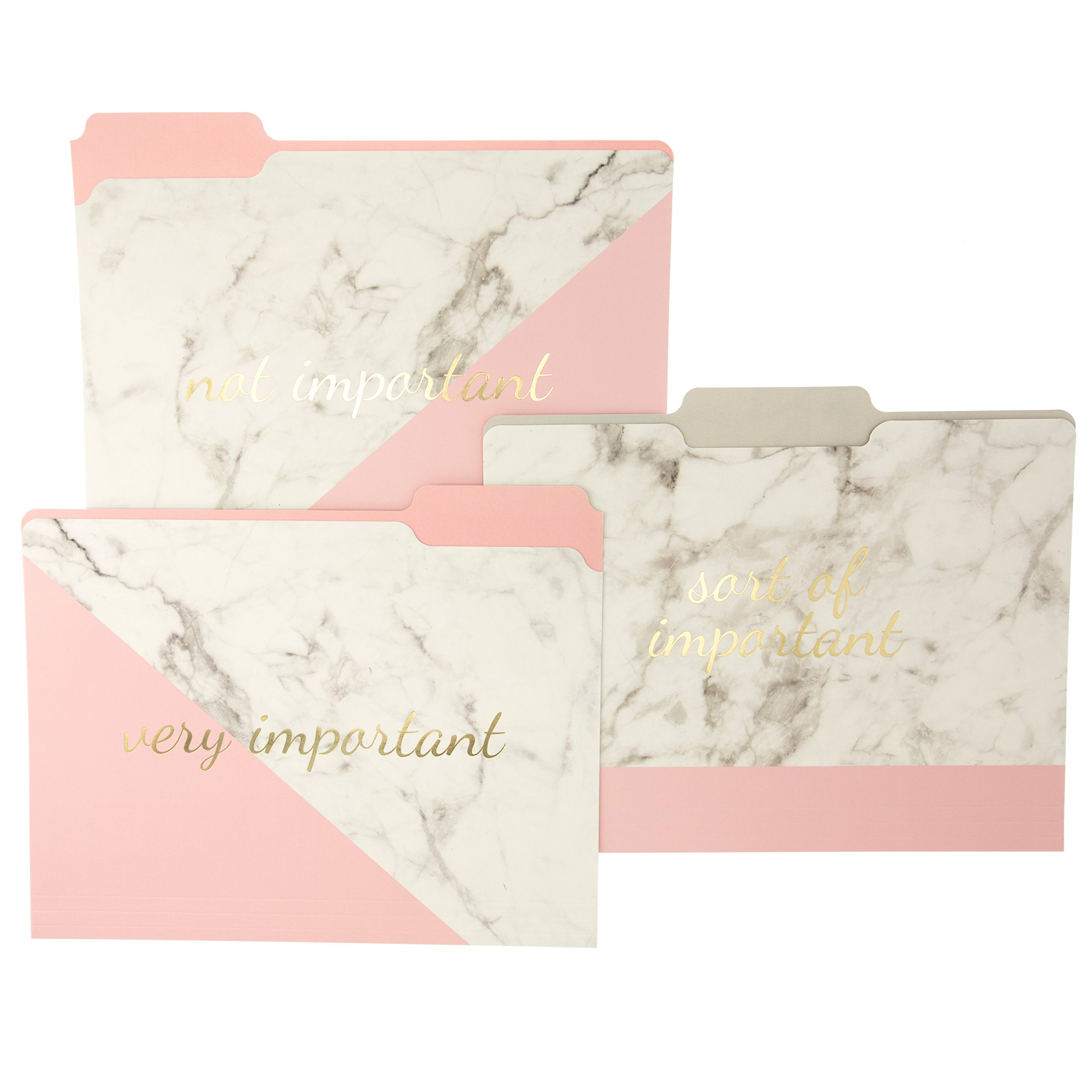 Graphique Blush Marble File Folder Set – File Set Includes 9 Folders and 3 Unique''Important'' Designs, Embellished w/Gold Foil on Durable Triple-Scored Coated Cardstock, 11.75'' x 9.5'' by Graphique