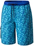 TSLA Men's 11 Inches Swimtrunks Quick Dry Water